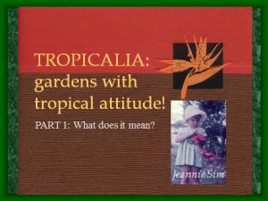 Tropicalia Talk File Title page