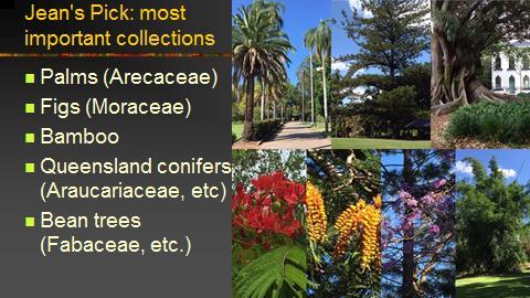 botanical riches the story of botanical exploration