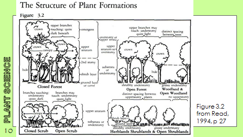Ex Botanic Gardens planting design Talk: Structure of Plant Formations