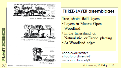 Ex Botanic Gardens planting design Talk: Three Layer Assemblages