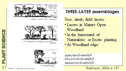 Ex Botanic Gardens planting design Talk: Three Layer Assemblages