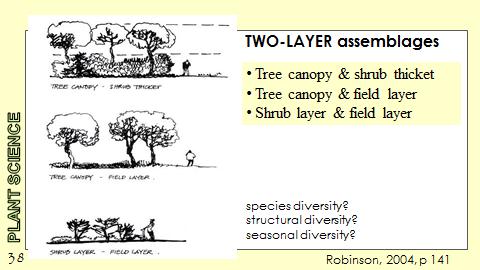 Ex Botanic Gardens planting design Talk: Two Layer Assemblages
