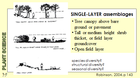 Ex Botanic Gardens planting design Talk: Single Layer Assemblages
