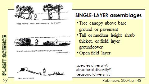 Ex Botanic Gardens planting design Talk: Single Layer Assemblages