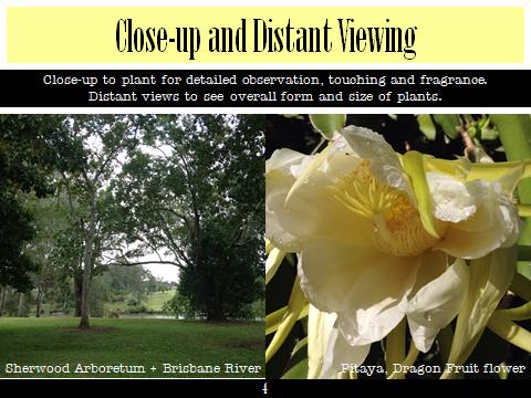 Ex Botanic Gardens Planting Design Talk: viewing distance