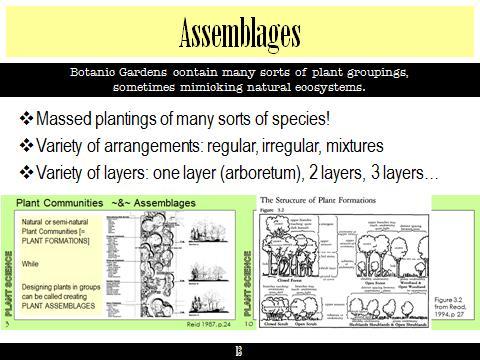 Ex Botanic Gardens planting design Talk: Assemblages
