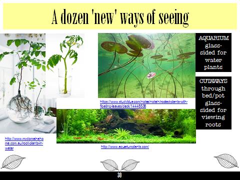 Ex Botanic Gardens planting design Talk: see 6